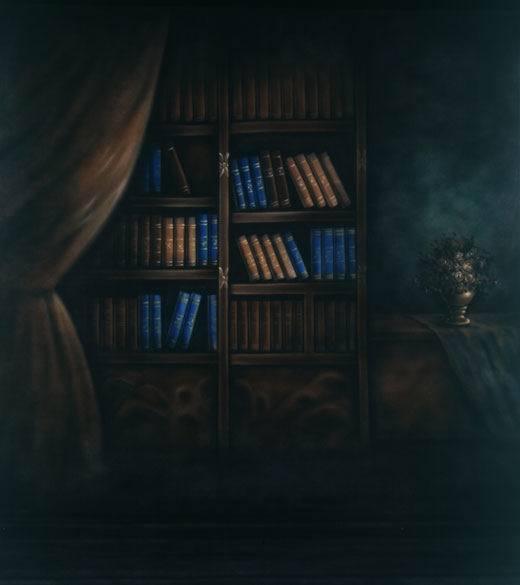 8x12FT Indoor Books Shelf Bookcase Dark Brown Wall Curtain