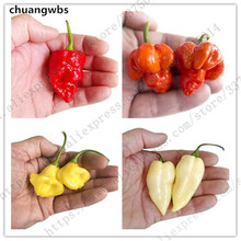 100pcs / bag of pepper Various colors and shapes of pepper Very spicy chili Organic vegetable Healthy and tast plants все цены