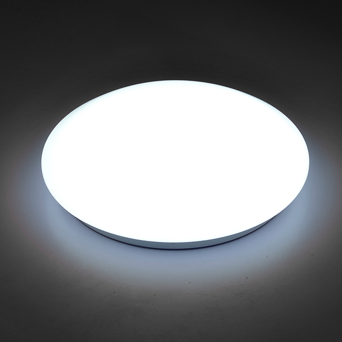 Ceiling Light Led Balcony Intelligent Led Light Human Body