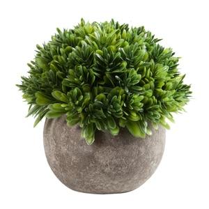 Image 5 - Erythrina 바다 미니 화분 인공 즙이 많은 식물 분재 세트 가짜 꽃병 장식 꽃 홈 발코니 장식