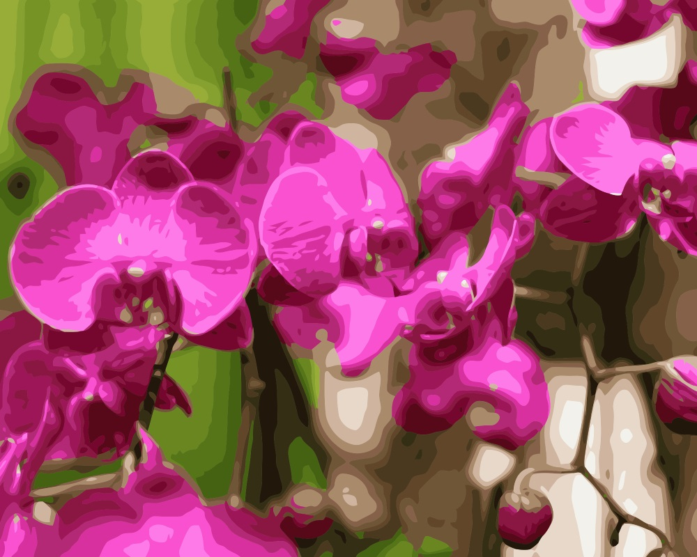 Mahuaf I038 Moth Orchid Diy Painting By Numbers Flowers Hand Painted Canvas Digital Oil