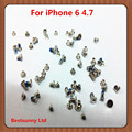50set  Full Screw Set  for iphone 6 4.7''   with 2 Bottom Screws Fix  Repair Kits  free shipping