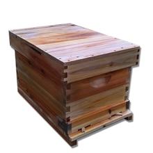Пчеловодный улей полный набор из семи пчел, ульей, инструменты для пчеловодства, вареный воск, медовый улей, стандартная ель, пчелиный улей