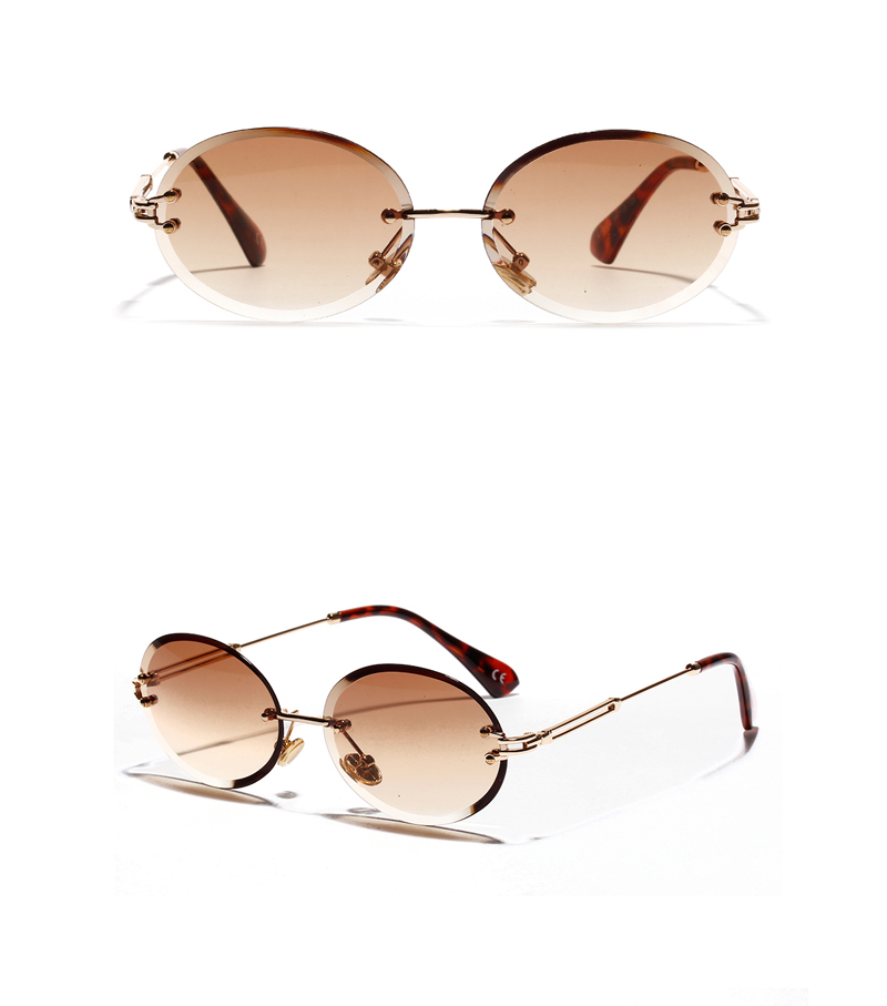 oval sunglasses 2030 details (8)