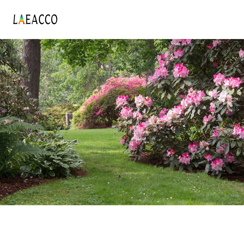 Laeacco Photo Backgrounds Green Grass Flowers Garden Tree Spring