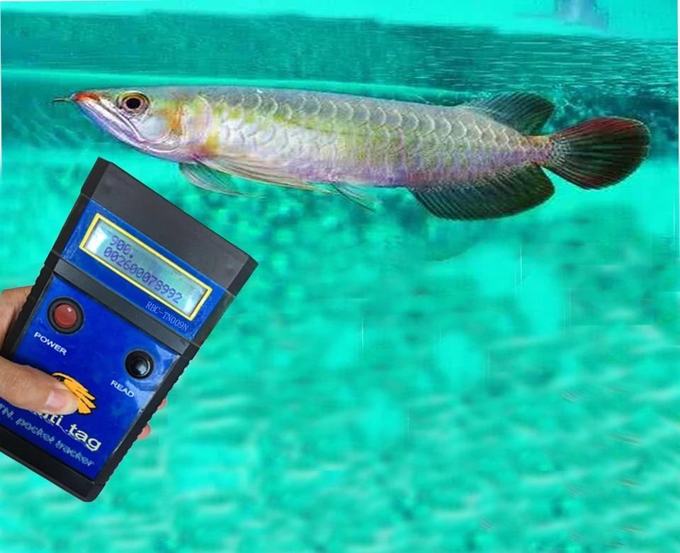 Free shipping RFID fish microchipFDX-A/FDX-B Arowana Chip Scanner mircrochip reader fish reader Free shipping RFID fish microchipFDX-A/FDX-B Arowana Chip Scanner mircrochip reader fish reader
