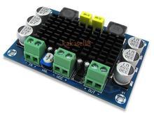 Carte damplificateur audio de puissance numérique Mono canal cc 12V 24V 100W TPA3116DA