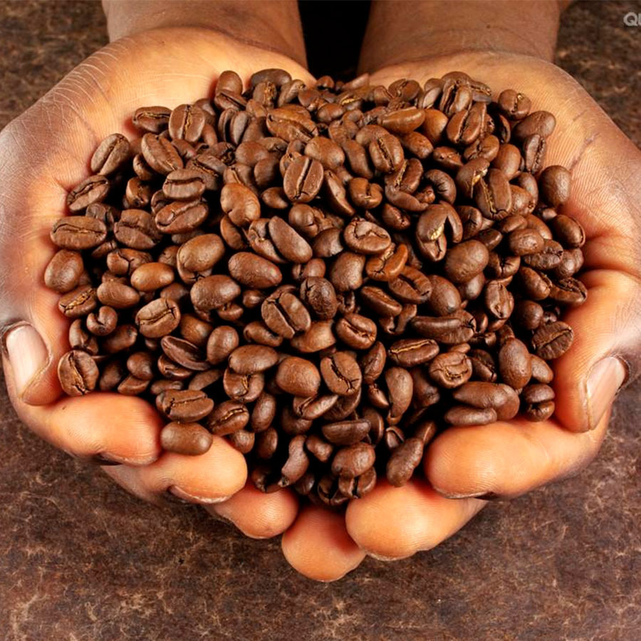 bagno di caffè verde in grani