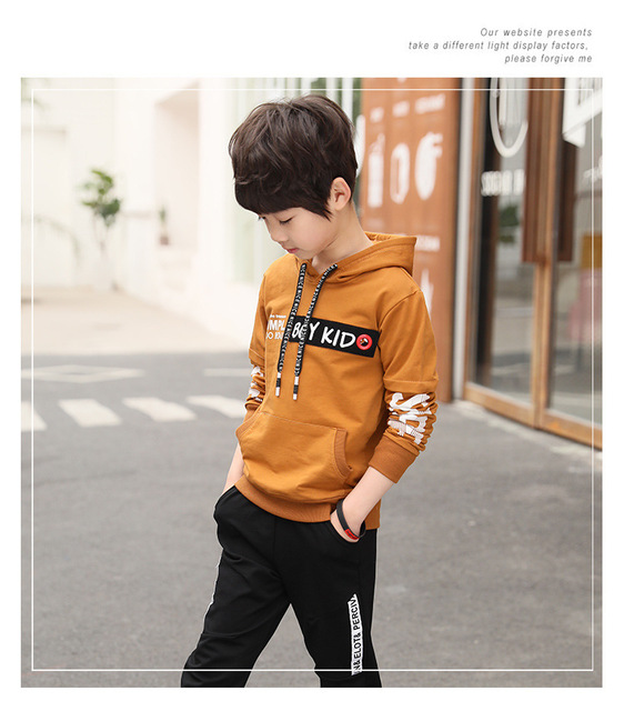 Spring New 2018 Casual Boy Tracksuit Pullover Jogging Set Childen Hoodies Sweatpants Sports Suit baby Children's Clothing Set 3