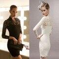 V-neck Women's Lace Yoke Lined Sheath Evening Party Bodycon Dress