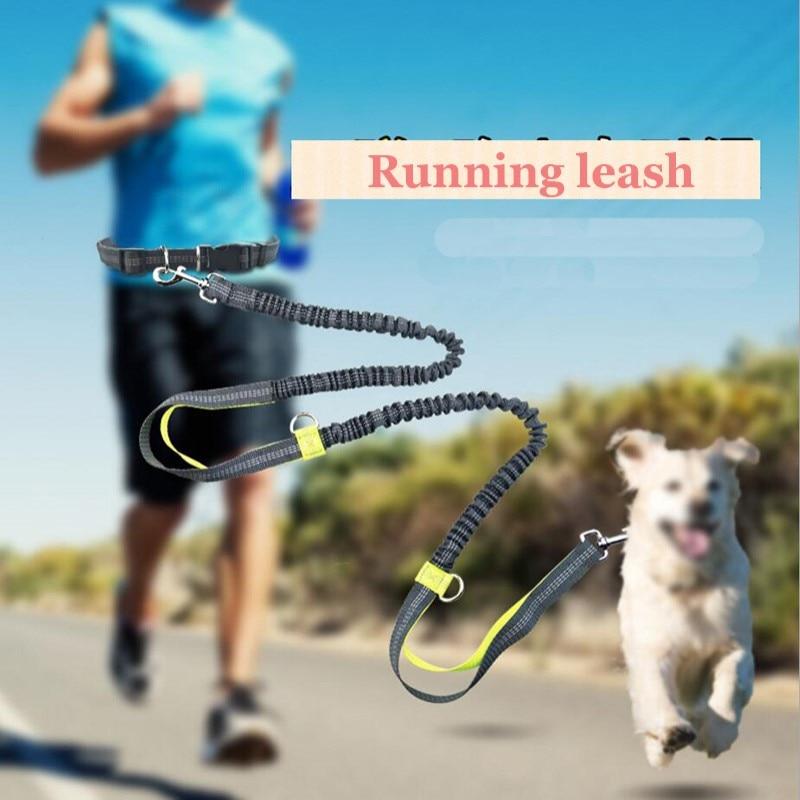 Reflective Safety Pet Dog Leashes Running Lead Collar Bag Sport Waist Leash Long Rope Big Dog Collar Dog Training Accessories