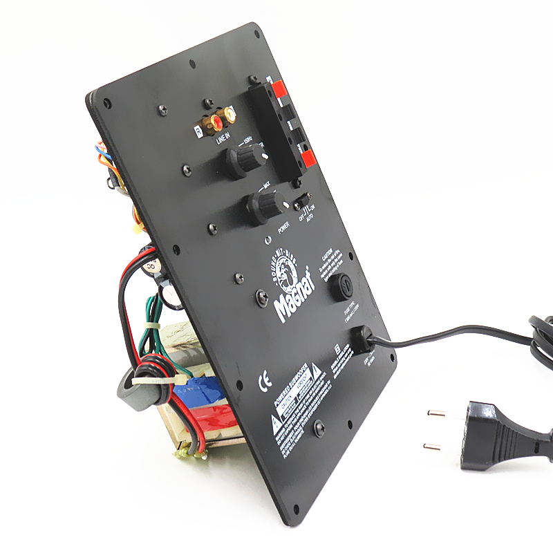 100W Home 1.0 Active Subwoofer Amplifier Board High Power Integrated HIFI Amplifier For Subwoofer Board
