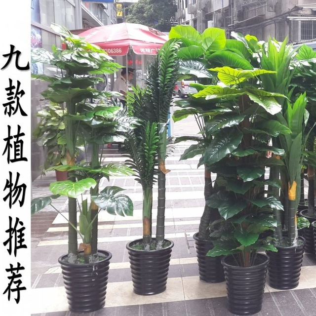Artificial Trees For Living Room Beautiful Artwork Plants Potted Tree Plant False Eye Simulation Fake Decorated Office Bonsai
