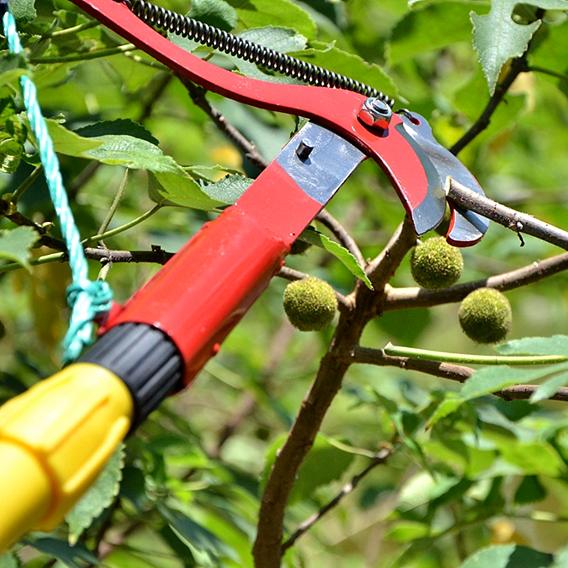 Купить с кэшбэком High Altitude Pruning Shears Tree Trimmer Branches Cutter Garden Pruner Scissor Pick Fruit Tool with Rope No Handle