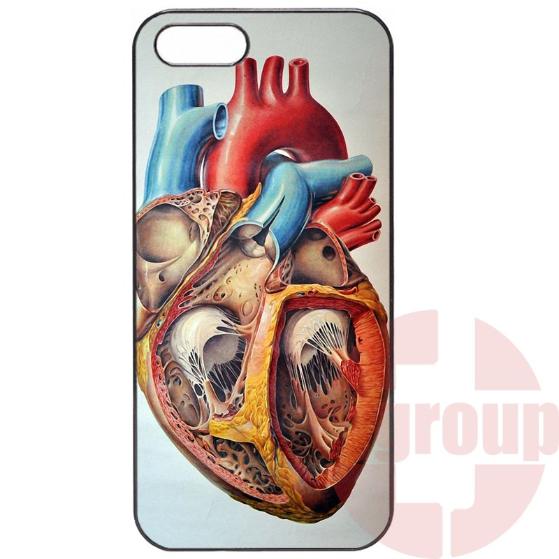 Cute Skin Vintage Medical Anatomical Heart Diagram For Samsung