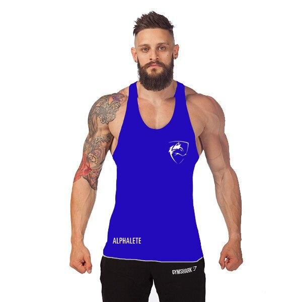689dcc179bd0d0 2015GymShark Alphalete Men s Stringers Workout Tank Tops Bodybuilding  Clothing Hip Pop Vest poleras sin manga para hombre