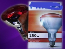 ФОТО BR125 IR Red 250W IR 250 RD2 Infrared lamp hard glassHEATING WARM BULB 5000Hours FREE SHIPPING 230V-250V