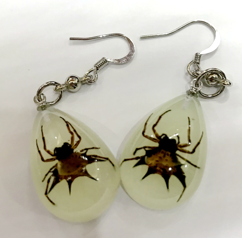 YQTDMY Earrings Drop-Entomology Dangle Spider Pair Real of Insect Vintage