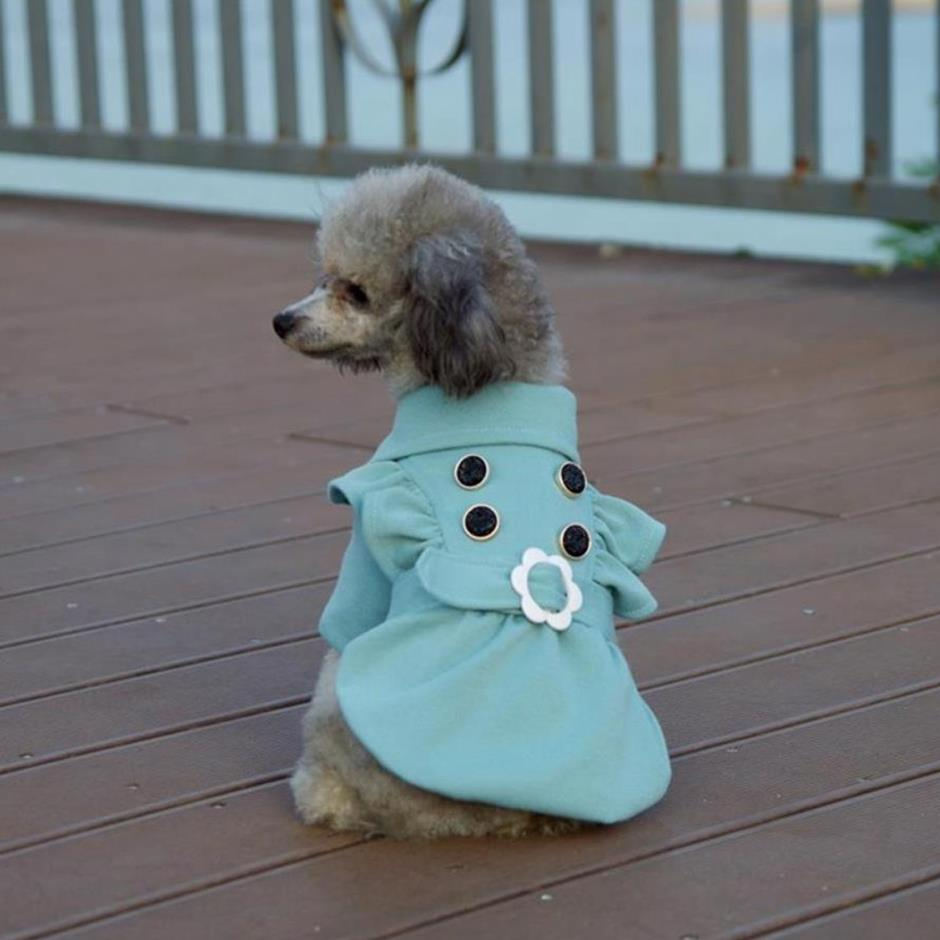 Dorable Dog Suits For Weddings Vignette - All Wedding Dresses ...