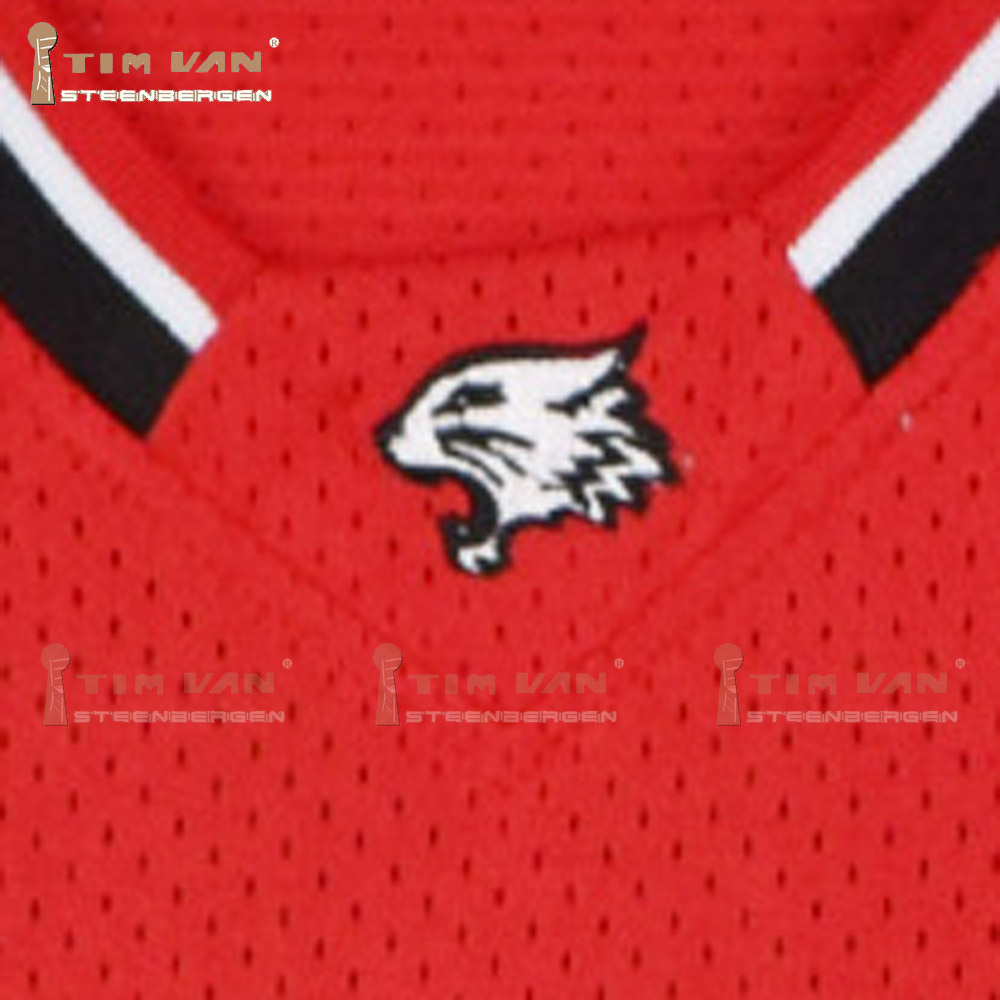 Zac Efron Troy Bolton 14 East High School Wildcats Home Basketball Jersey  All Stitched All Sewn Red-in Basketball Jerseys from Sports   Entertainment  on ... b0c0afa7a