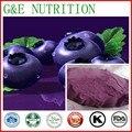 500g 10:1 organic acai berry fresh fruit extract powder Acai berry powder acai berry extract powder