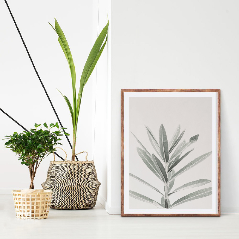 Eucalyptus Wall Art Prints Living Room Decor_