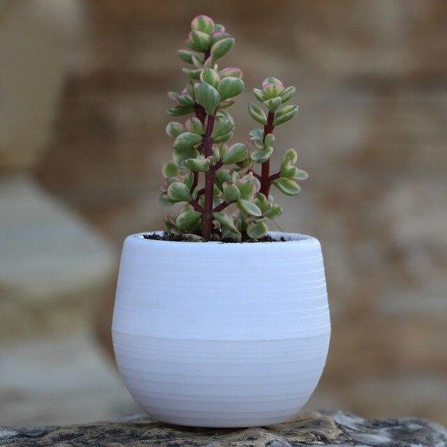 Colorful Rainbow Plastic Stone Pill Flowerpot home office garden Balcony Succulents Plants Desktop Pots Creative Small Pot #D2 4