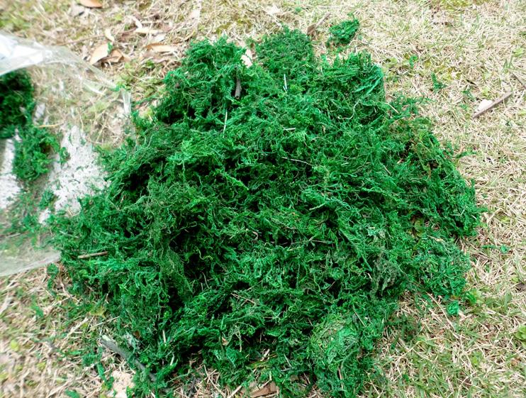 Image 3 - Natural 50g 100g bag dry real green moss decorative plants vase artificial turf silk Flower accessories for flowerpot decoration-in Artificial & Dried Flowers from Home & Garden
