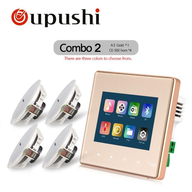 Oupushi Home Audio visual en amplificadores de pared, FM/SD/in AUX/USB reproductor de música, Bluetooth amplificador estéreo digital, Cine en Casa cinem