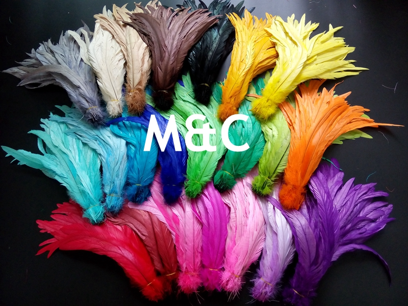 Leading supplier in China! 500pcs rooster tails Feather 20 25cm 8 10inch chicken tail Feathers for wendding decorations