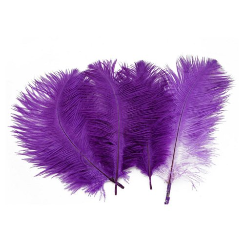 Online Buy Wholesale Purple Kitchen Decor From China: Online Buy Wholesale Purple Ostrich Feathers From China