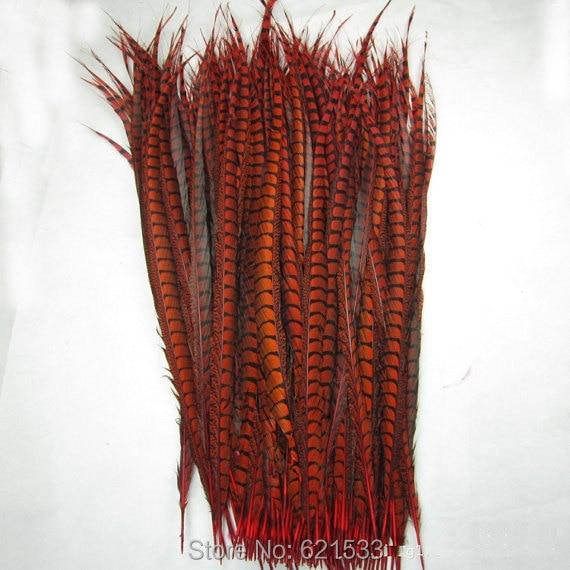 50pcs / lot 35-40inch 90-100cm Long Red Lady amherst ocas bažanta peří AAKvalita pro kostýmní karnevalový kostým Showgirl