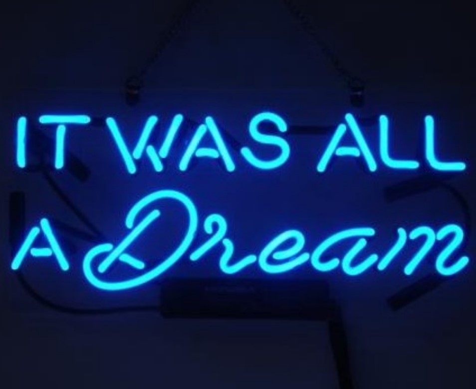 IT WAS ALL A DREAM SignBeer Pub Bar Store Party Wall Decor  Gift Neon Sign Light