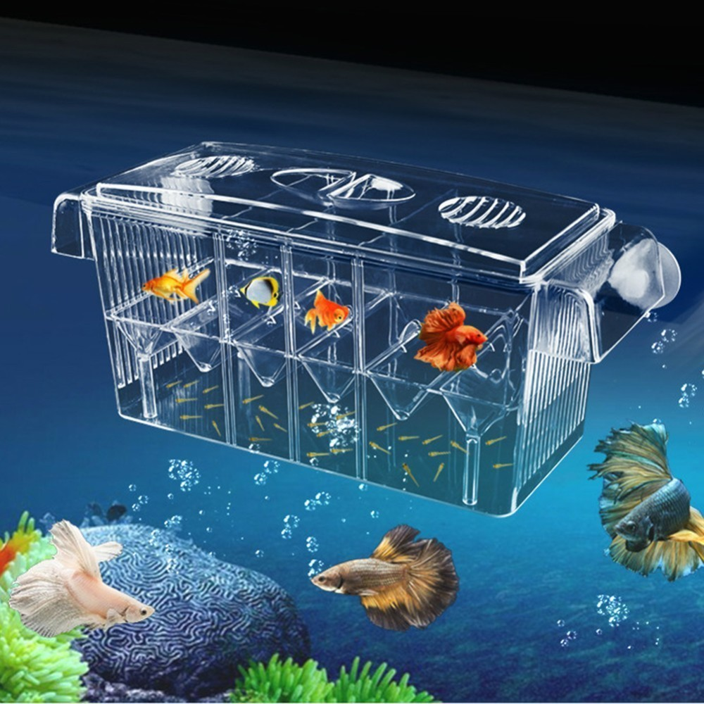 4 Rooms High Clear Fish Breeding Box Acrylic Aquarium Breeder Box Double Guppies Hatching Incubator Isolation