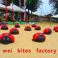 Envío de la alta calidad creepy mariquita suave juguetes fábrica de kite kite puede caminar al aire libre de montaje de aviones modelo wei