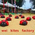 O envio gratuito de alta qualidade assustador macio joaninha pipa pode andar ao ar livre brinquedos modelo de montagem de aeronaves wei pipa fábrica
