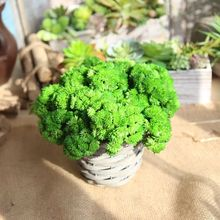 HUAIU Artificial Flower Grass Simulation Plant Latex Real Touch DIY Home Wedding Party Garden Decoration Photography Props