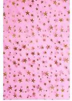 Custom Vinyl Cloth Shiny Stars Pink Photography Backdrops For Newborn Baby Shower Photo Studio Portrait Backgrounds