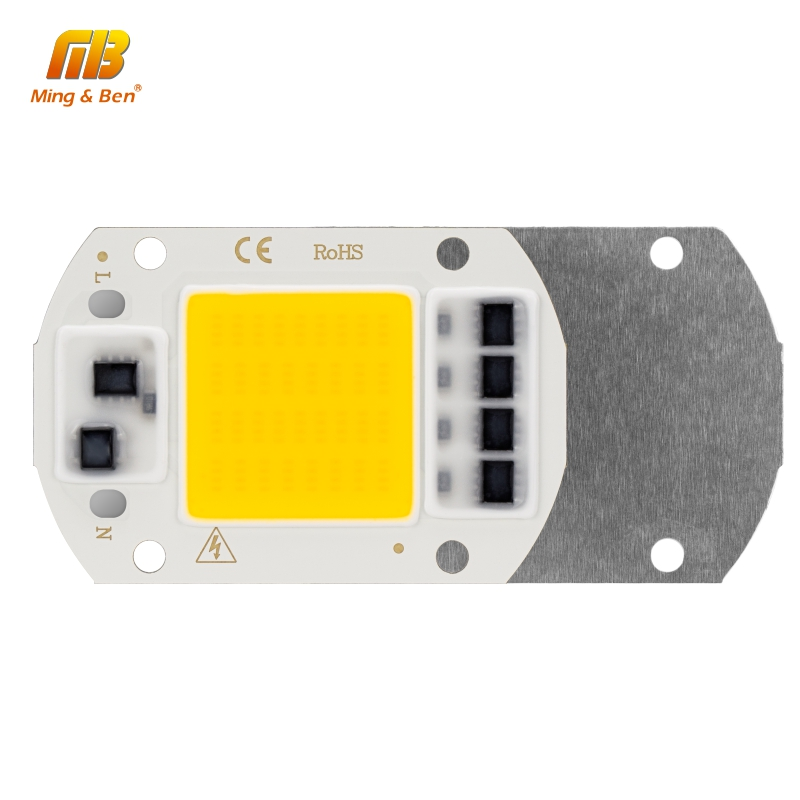 5pcs LED COB Chip 20W 30W 50W AC 220V Smart IC DIY LED Beads For LED Floodlight Spotlight Warm White Cold White Grow Light
