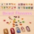 12 Цвет Сушеные Сухой 3D Цветочные Украшения Ногтей Маникюр DIY маленький большой Сушеные цветы Мода styling Инструменты