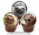 24 Sloth Edible cake...