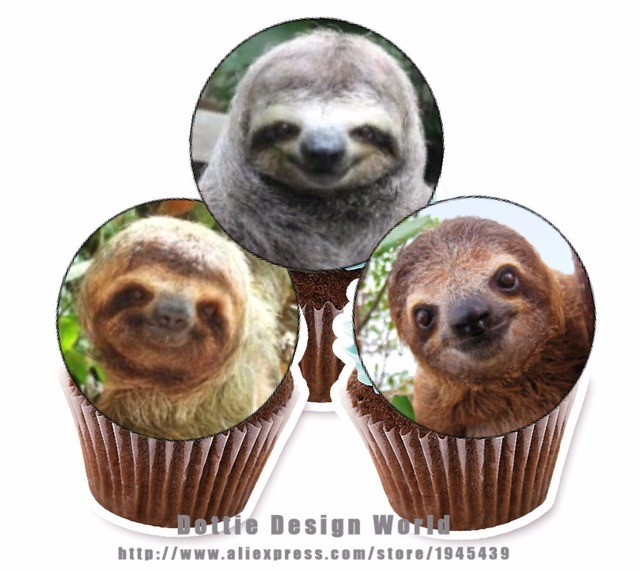 24 Sloth Edible Cake Topper Wafer Rice Paper For Cupcake Cookie Decoration Birthday Baby