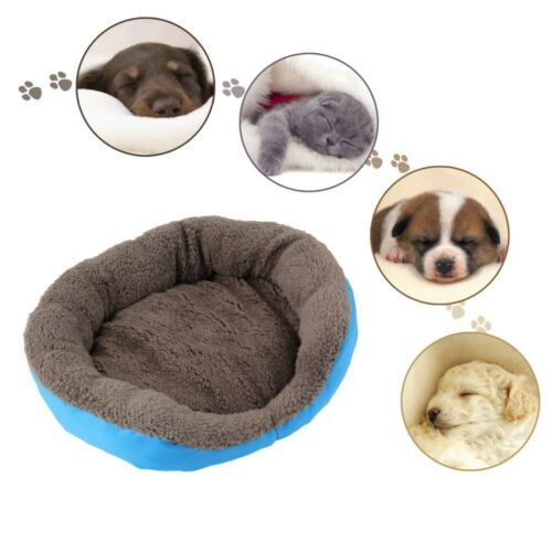 Limit 100 Dog Beds/Mats Pet Dog Cat Bed Mat Dog Supplies Durable Kennel Doggy Puppy Cushion Basket Stack Pad Hot 3