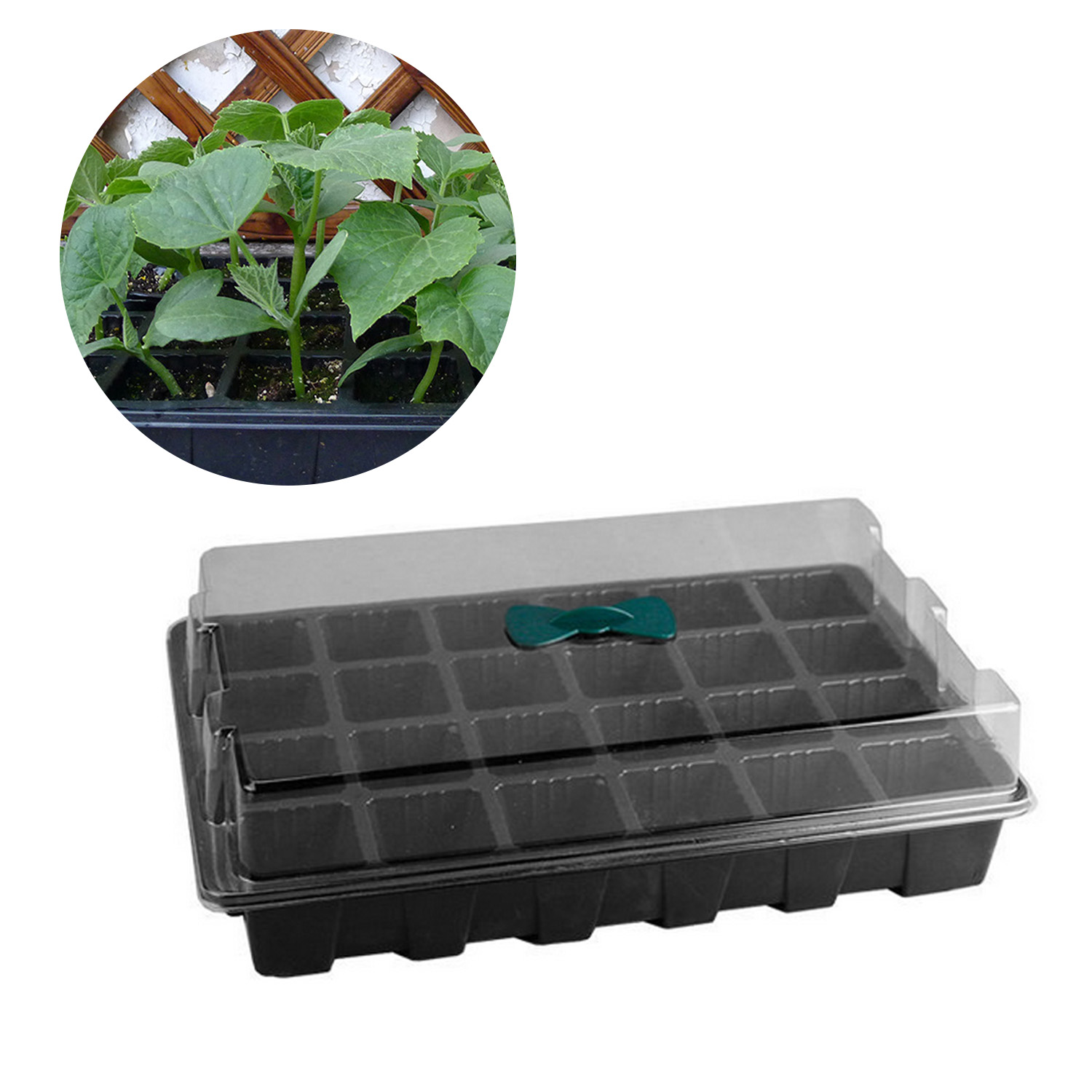 Behogar 3PCS 24-Cell Seedling Seed Starter Tray Kit with Breathable Vents for Garden Greenhouse Microgreens 36.5x23x10.5cm