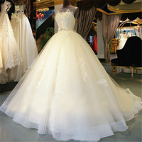 Hollow Back Illusion Vintage Organza Wedding Dress Ball Gown Bridal Dress White Sleeveless Court Train Wedding Dresses WX0008