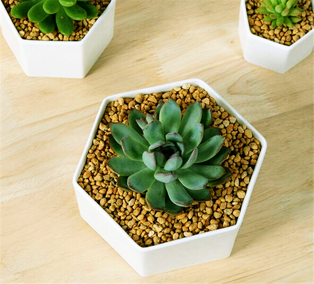 Great idea for small plantssimple hexagon ceramic flower potwhite simple hexagon ceramic flower potwhite succulents planter flowerpot vase for gift home decoration in flower pots planters from home garden on mightylinksfo
