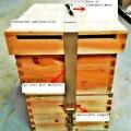 Conector de Transferência de CORDA Fivela de FITA DE Transporte CAIXA colméia Apicultura Ferramentas Produtos de Origem Animal