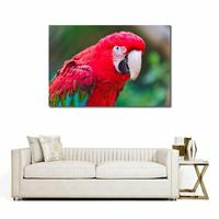 No Frame Modern parrot beak color red canvas printed painting Wall Pictures For living room Modern Animals Painting