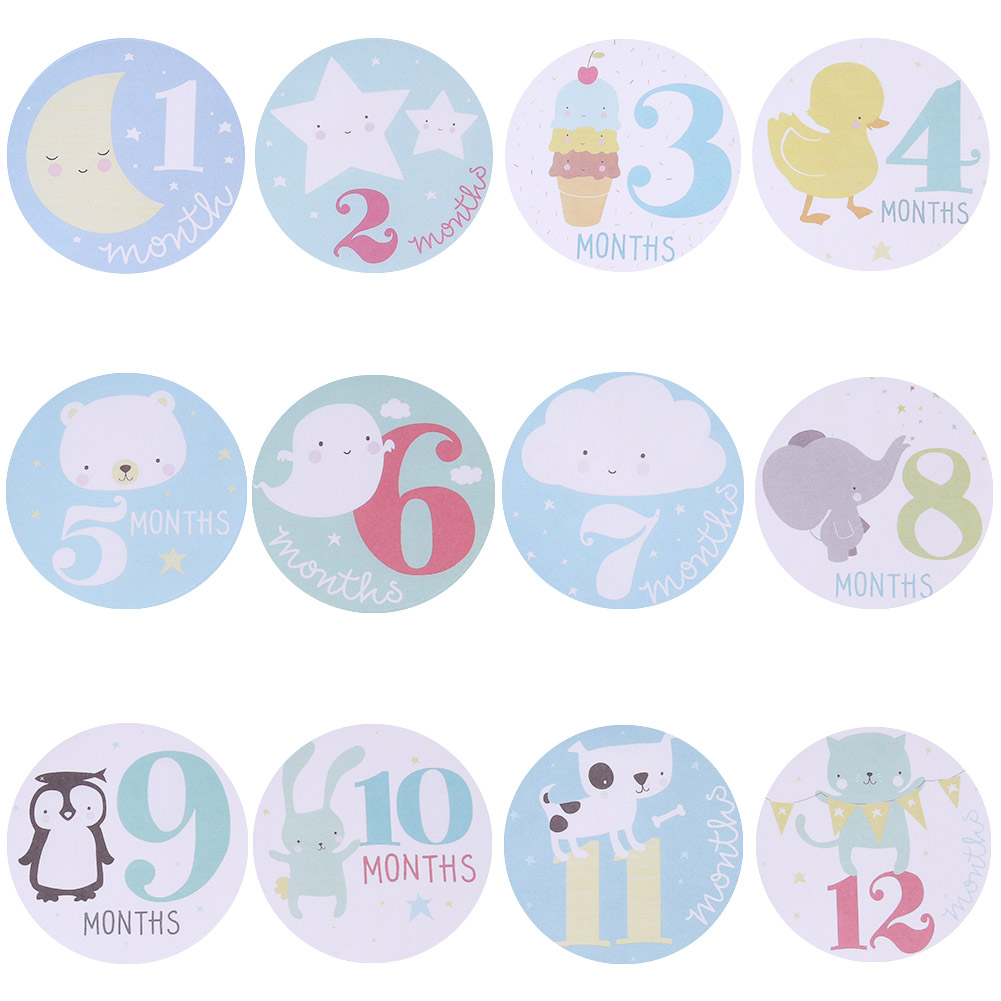 Baby Pregnant Women Monthly Photograph Stickers Fun Lovely Cartoon Pink/Blue 1-12 Month Milestone Clothes Decoration Stickers