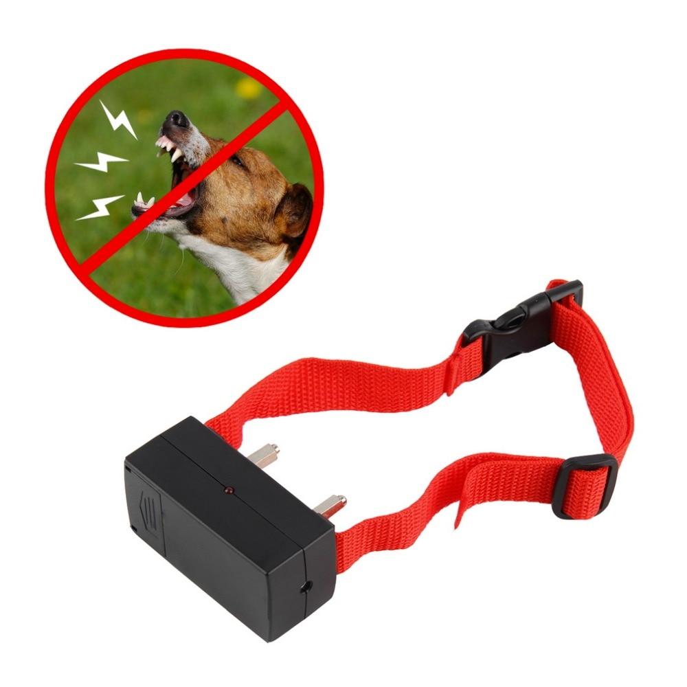 Dog Shock Collar Training Barking